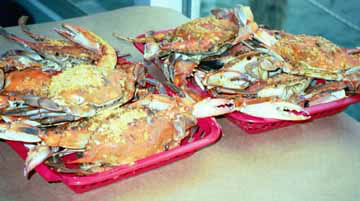 PHOTO OF CRABS
